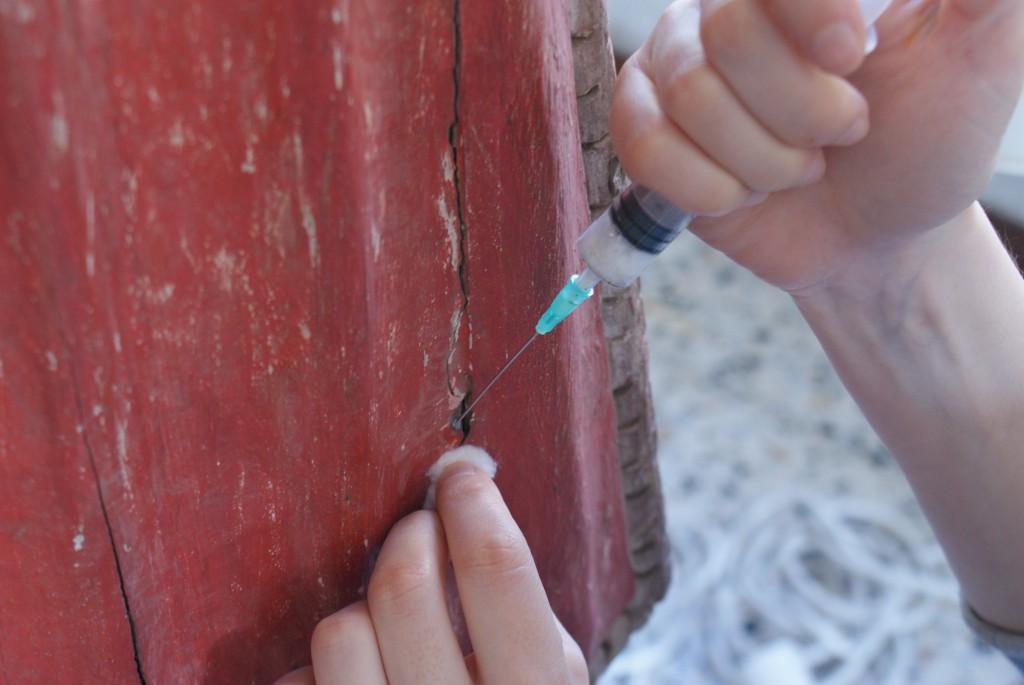 Proceso de restauración: desinsectación da talla.