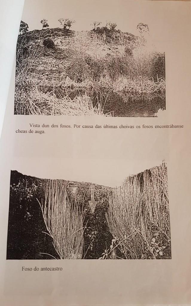 Martínez, Mª. Á. 1996. O castro de Cereixa. Samoeiro, 8.
